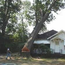 Как избавиться от ненужного дерева