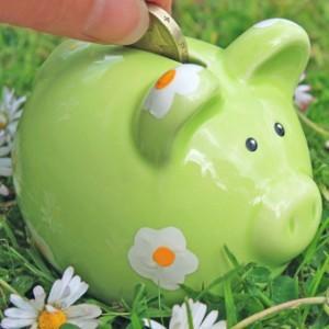 Как и на чем можно сэкономить?