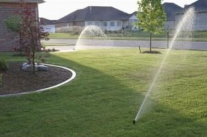 использование дождевой воды в быту